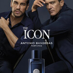 The Icon (Antonio Banderas)