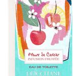 Fleurs de Cerisier Infusion Fruitée (L'Occitane en Provence)