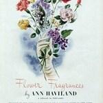 Hyacinth (Ann Haviland)