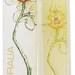 Floralia - Orchid Paradisi (Eau de Toilette) (Mayfair)