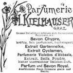 Gartennelke (H. Kielhauser)
