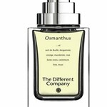 Osmanthus (The Different Company)