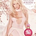 Fantasy In Bloom (Britney Spears)