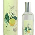 Bergamote (Provence & Nature)