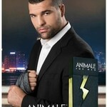 Animale for Men (After Shave) (Animale)