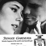 Jungle Gardenia (Tuvaché)