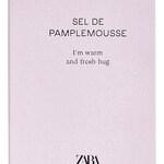 Sel de  Pamplemousse (Zara)