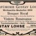 Violette Renaissance (Lohse / Gustav Lohse)