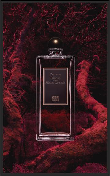 Chypre Rouge by Serge Lutens (2006) — Basenotes.net