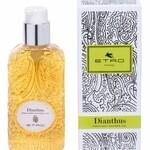 Dianthus (Etro)