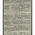 Eszterházy-Bouquet (A. Maczuski)