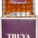 Thuya (Adam)