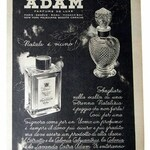 Adam (Eau de Cologne Extra) (Adam)