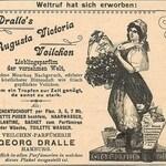 Augusta-Victoria-Veilchen (Dralle)