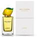 Fruit Collection - Lemon (Dolce & Gabbana)