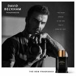 Bold Instinct (David Beckham)