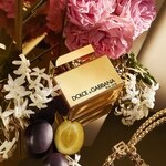 The One Gold (Dolce & Gabbana)