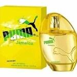 Jamaica Woman (Puma)