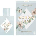 Wonder Leaf (Juniper Lane)