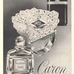 Bellodgia (Parfum) (Caron)