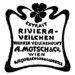 Riviera Veilchen (A. Motsch & Co.)