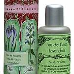 Eau de Fleur Lavandula (Maienfelser Naturkosmetik Manufaktur)