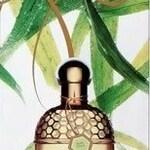 Aqua Allegoria Herba Fresca (Guerlain)