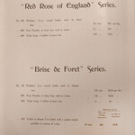 Brise de Forêt (John Gosnell & Co)