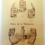 Gloire de la Malmaison (John Gosnell & Co)