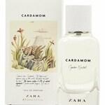 Cardamom (Zara)