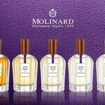 La Collection Privée - Acqua Lotus (Molinard)