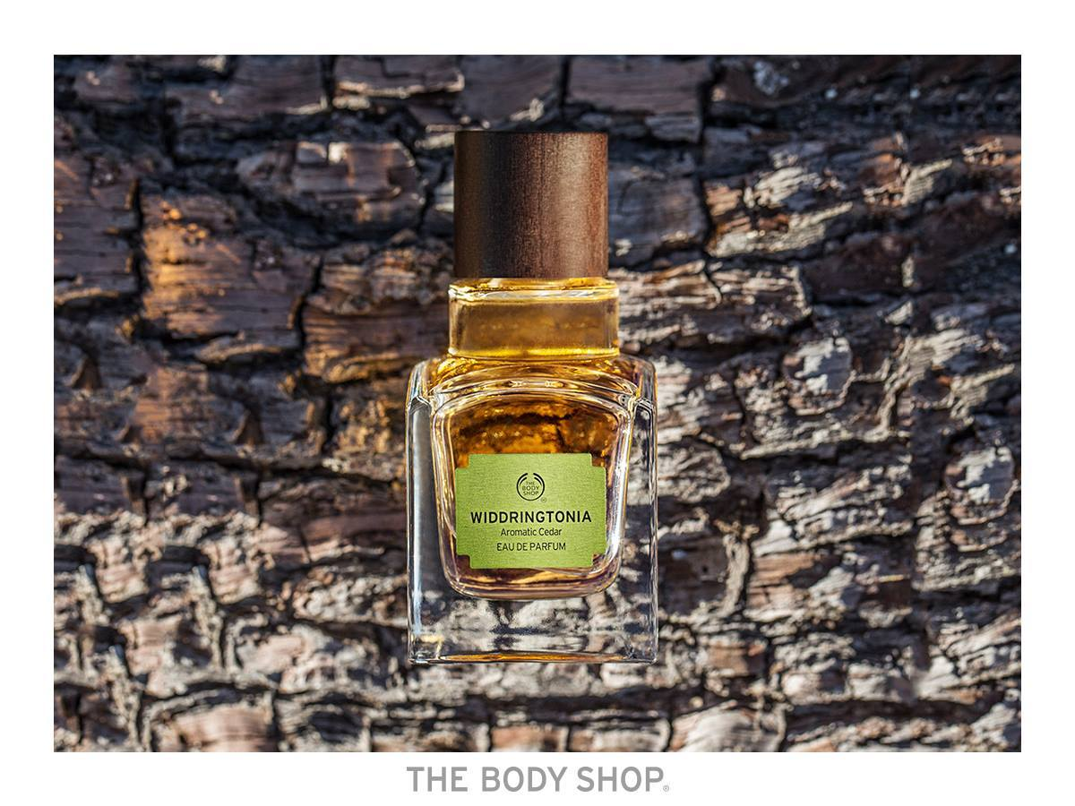 Widdringtonia Aromatic Cedar The Body Shop 2016