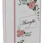 Amaryllis (Khadlaj / خدلج)