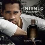 Dolce & Gabbana pour Homme Intenso (Eau de Parfum) (Dolce & Gabbana)