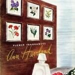 Wood Violet (Ann Haviland)