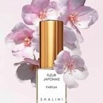 Fleur Japonais (Shalini)