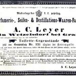 Heliotrope (A. C. Leyer)