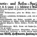 März-Veilchen (A. C. Leyer)