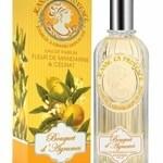 Bouquet d'Agrumes - Fleur de Mandarine & Cédrat (Jeanne en Provence)
