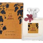 Wild Fig & Grape (Eau de Parfum) (di palomo)