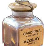 Gardenia Concentré (Violet / Veolay)