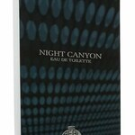 Night Canyon (Real Time)