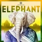 Elephant (Zoologist)
