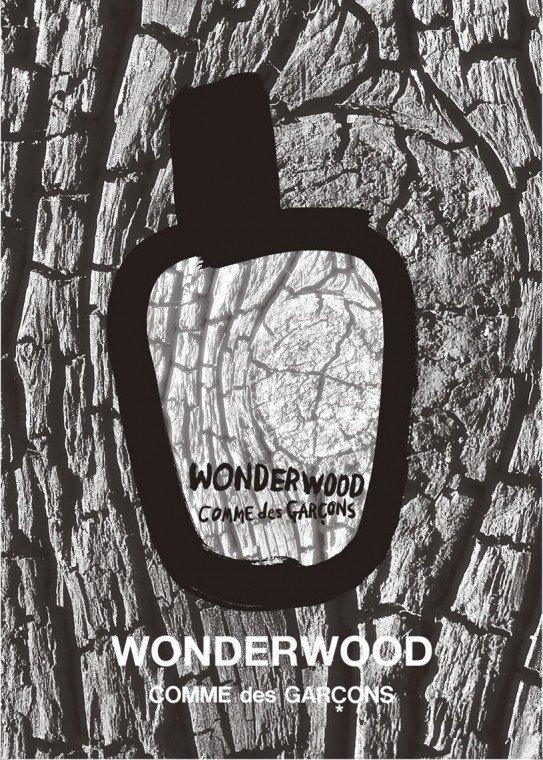 d90fa4be4aab Comme des Garçons - Wonderwood | Duftbeschreibung